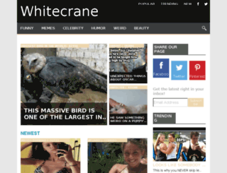 whitecrane.cc screenshot