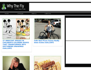 whythefly.com screenshot