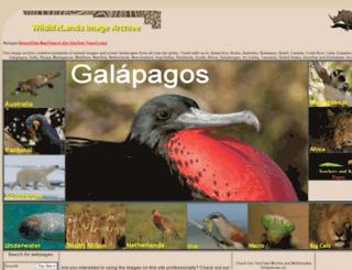 wildlifelands.com screenshot