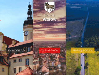 wolow.pl screenshot