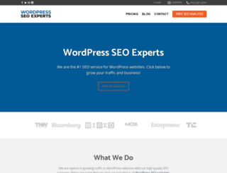 wordpress-seo.org screenshot