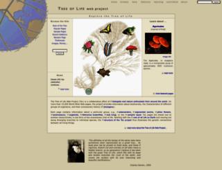 working.tolweb.org screenshot
