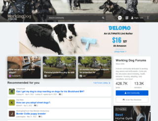 workingdogforum.com screenshot