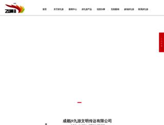 wuhanbjw.com screenshot