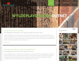 wyldeplayground.net screenshot