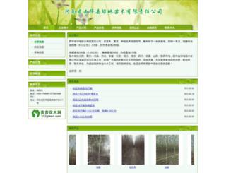 xgl98.312green.com screenshot