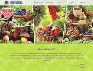 xkc.ru screenshot