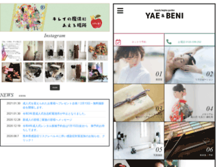 yae-japan.co.jp screenshot