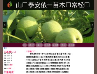 yeshangteng.com screenshot