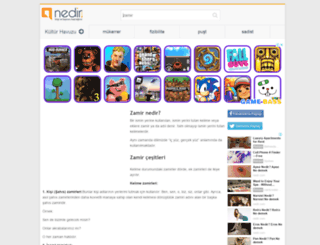 zamir.nedir.com screenshot