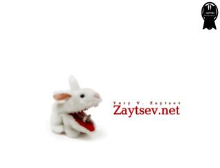 zaytsev.net screenshot