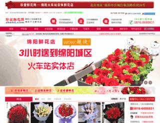 zhenii.com screenshot
