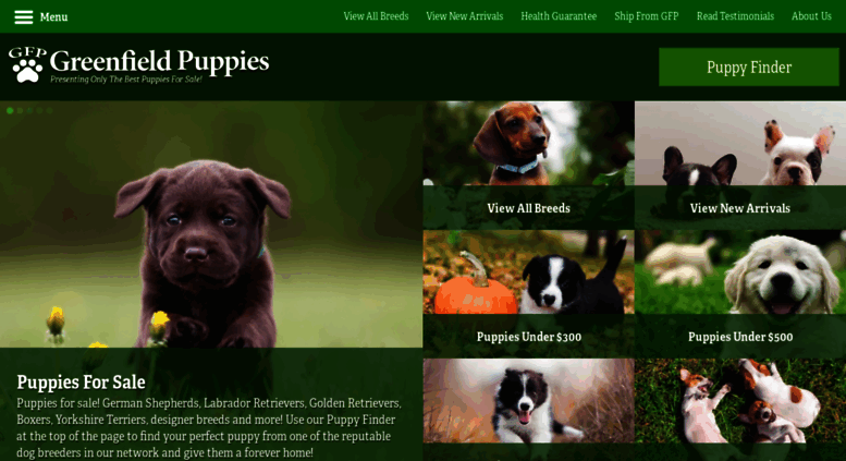 Access Greenfieldpuppiescom Puppies For Sale Find Your Perfect