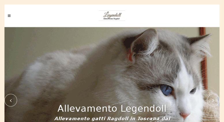 Access Legendollit Allevamento Gatti Ragdoll Toscana Legendoll