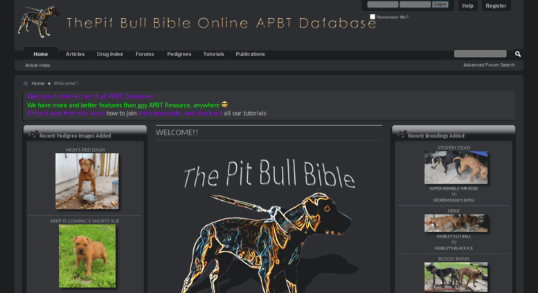 Access thepitbullbible com  The Pit Bull Bible Online APBT